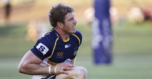 david pocock brumbies