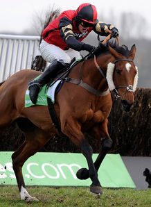 Pacha Du Polder won a dramatic renewal of the StanJames Supporting Greatwood Gold Cup Handicap Chase.