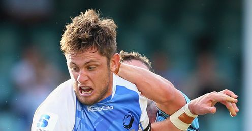 Hugh McMeniman for Western Force