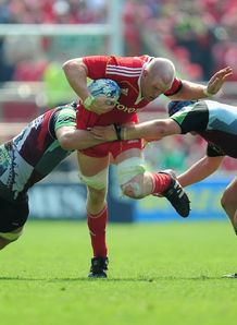 paul oconnell munster harlequins