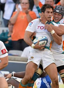 Cheetahs centre Robert Ebersohn after scoring