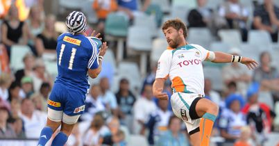 Springboks call up Cheetahs trio