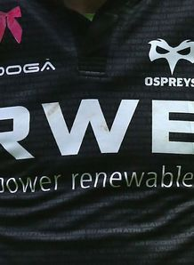 Ospreys shirt logo 2013