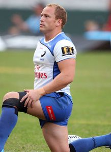 Brett Sheehan Western Force scrum half 2013
