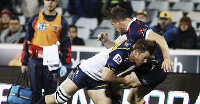 Brumbies cruise past Rebels