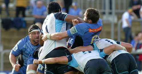 Western Force v NSW Waratahs
