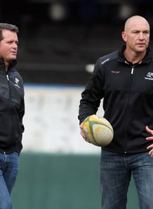 Sean Everitt Brad Macleod Henderson Sharks coaches