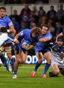 Western Force wing Nick Cummins in action