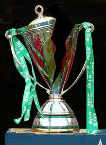 brokenHeineken cup trophy