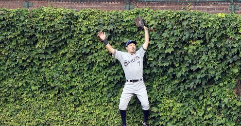 Hedge of reason: Alex likes the ivy at Wrigley Field