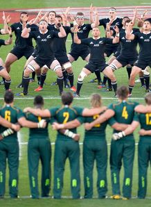 haka south africa new zealand