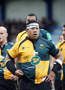 salesi maafu northampton saints