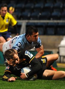 Josh Bassett wasps try 2013