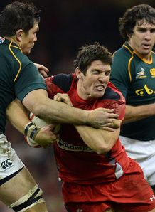 James Hook Wales v SA 2013
