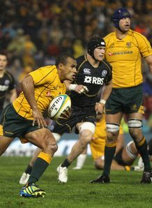 Will Genia of the Wallabies Australia Scotland box