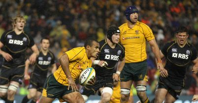 Genia concentrating on Wallabies