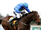 Hurricane Fly (IRE)
