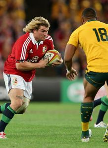 richard hibbard lions