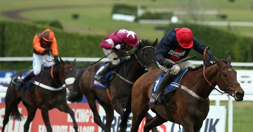 Bobs Worth: Tipped to triumph once again in the Gold Cup