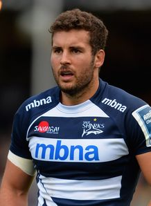 Mark Easter for Sale Sharks