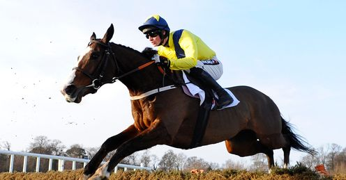 Our Conor can go back-to-back in the Triumph Hurdle, says Alex