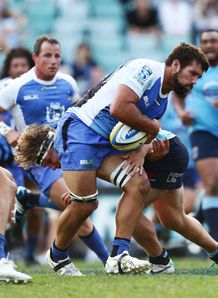 Chris Alcock in action for Western Force
