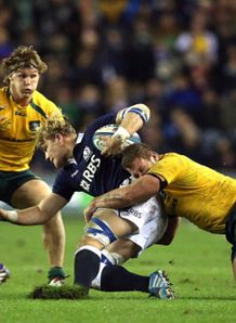 murrayfield pitch cutting up david denton michael hooper scotland australia