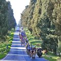 The second stage took the peloton 173km from San Vincenzo to Cascina