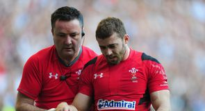 Halfpenny out for the season