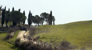 Strade-Bianche took place in sunny but typically dusty conditions