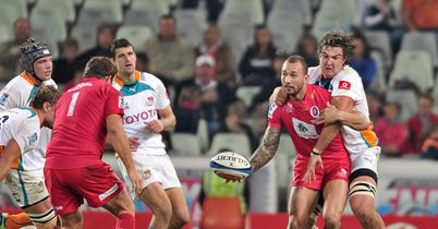 Preview: Reds v Cheetahs
