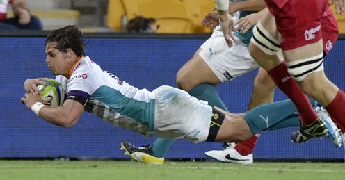 Francois Venter  Cheetahs Super Rugby