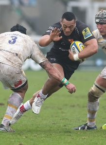 sinoti sinoti newcastle falcons