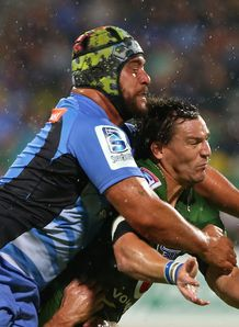potgieter cowan force bulls