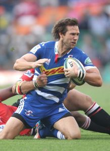 peter grant stormers v lions