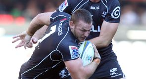 Sharks see off tame Cheetahs