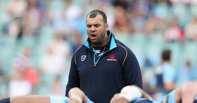 Cheika welcomes underdogs tag