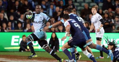 Mtembu to lead Sharks in Currie Cup