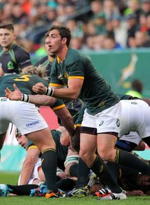 Ruan Pienaar SA v world XV 2014