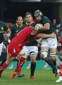 South Africa lock Victor Matfield carrying against Wales