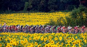The 19th stage proved another colourful one as the riders tackled 208.5km of largely-flat roads