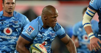 Bulls hooker to join Stormers