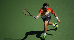 Ferrer to face Federer in finale