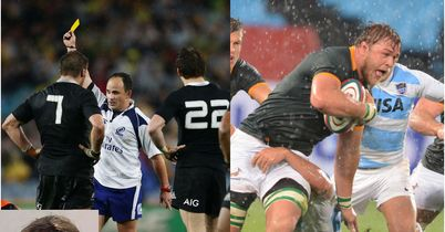 Expert Witness: Rugby Champs