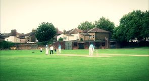 Inner City Cricket