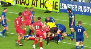 Leinster 42 - 12 Scarlets - Highlights