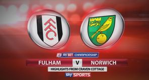 Fulham 1-0 Norwich