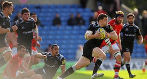 Falcons soar over Welsh