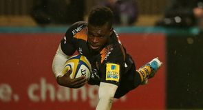 Wasps in fitting farewell