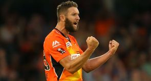 Scorchers through to final